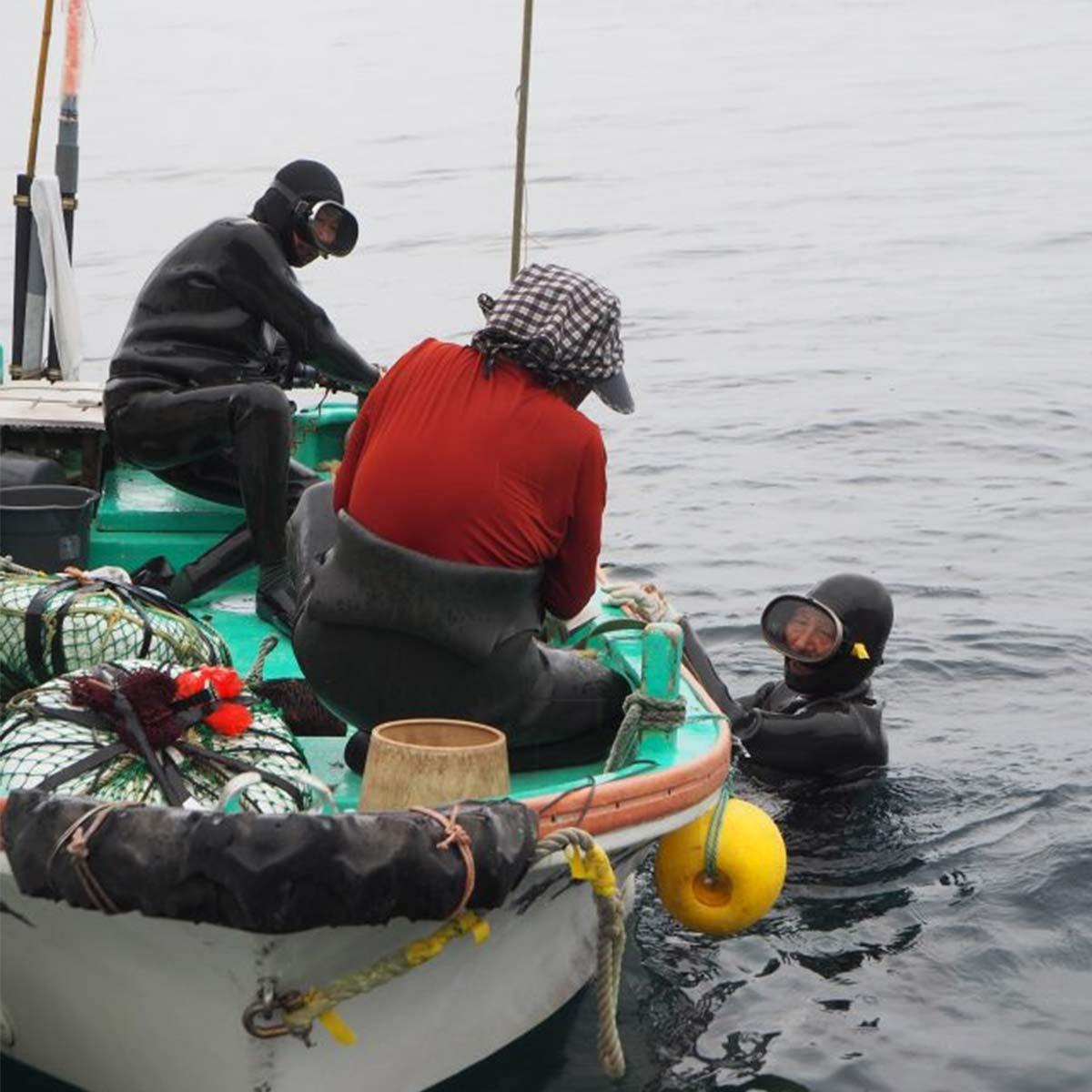 天草漁 船