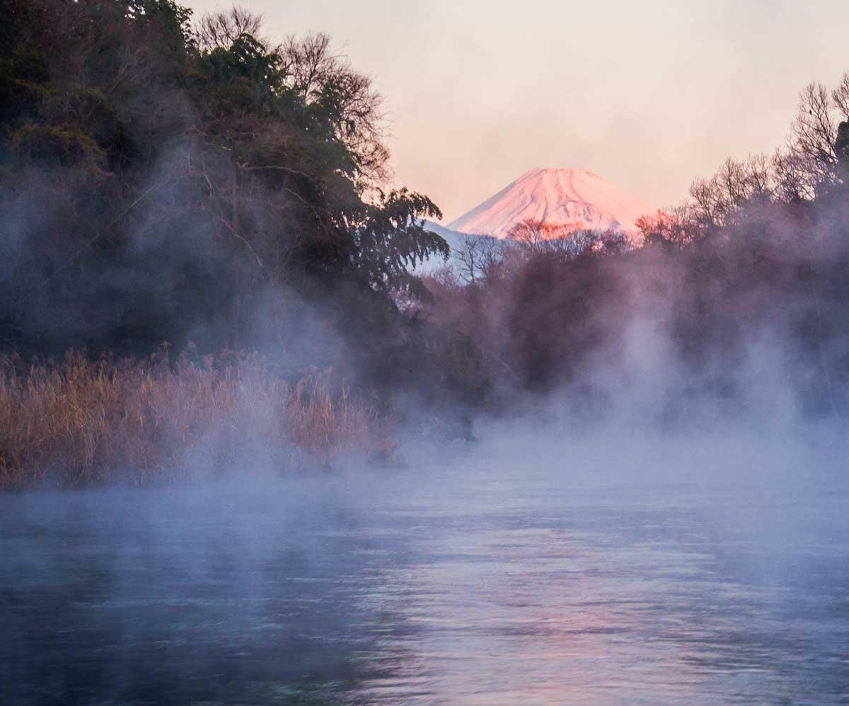 冬景色の柿田川